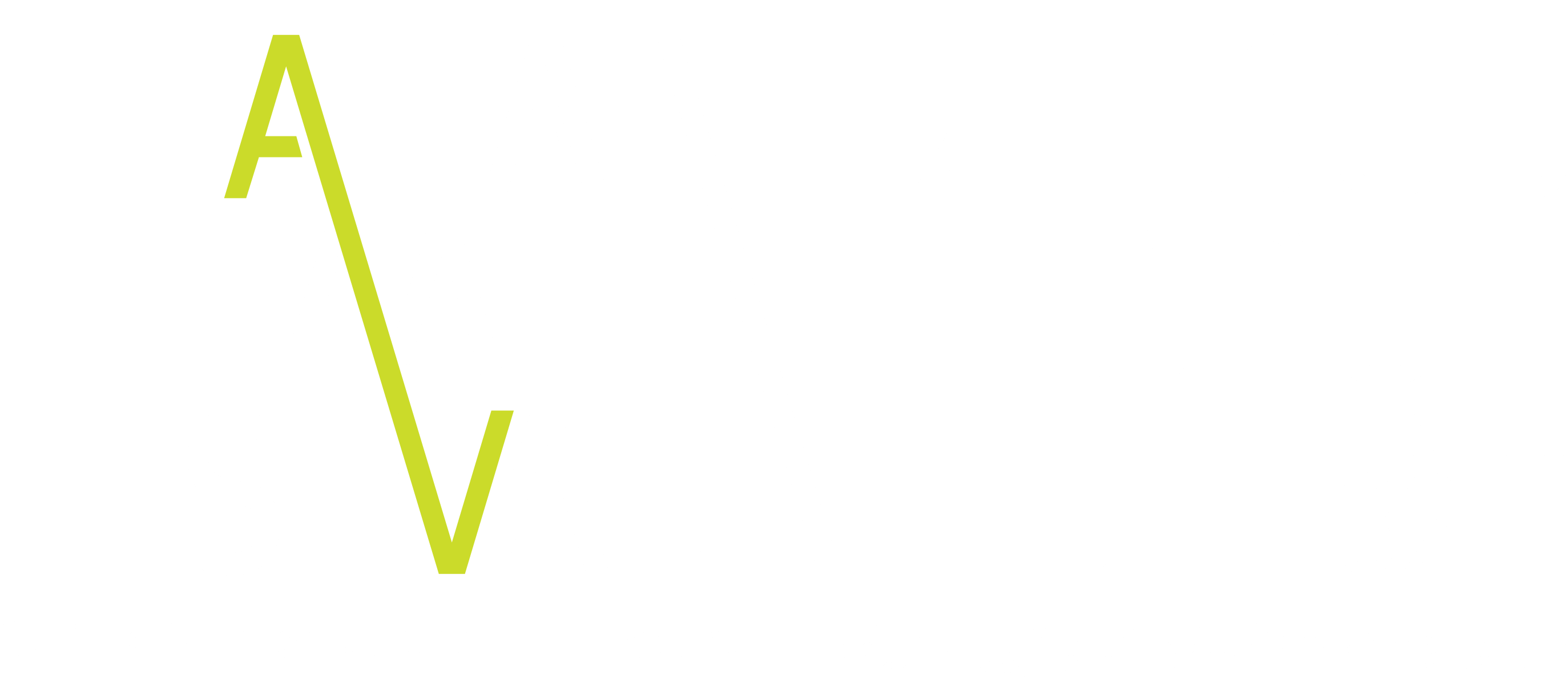 Haifa 31st International Film Festival