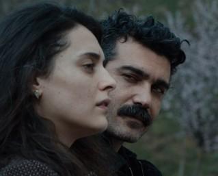 הקולנוע הטורקי החדש